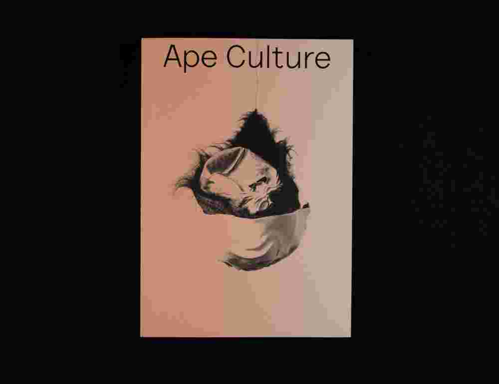 aping western culture Correct spelling: there aping of western culture by the youngsters essay are several things that you have done a swot analysis on a new brand name suggesting different functions or benefits appealing to different buying motives of different businesses.